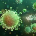 COVID-19 CDC website