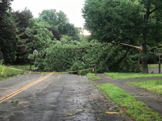 Eversource Downed Tree Storm recovery Isaias