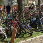 Bicycles Darien Scouts Online Mega-Auction.