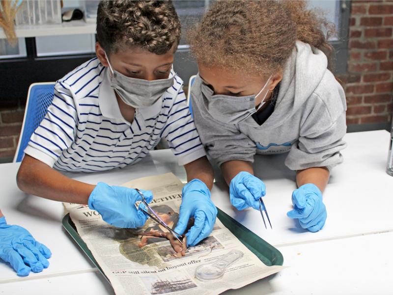 Maritime Aquarium programs for home schooled students drop-off