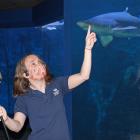 Bridget Cervero Maritime Aquarium Points to Sharks